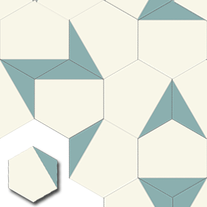 carreaux de ciment HEX009