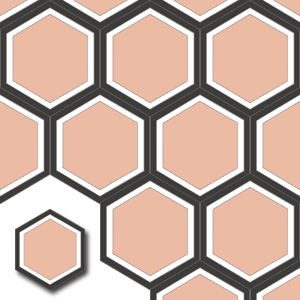 encaustic carreaux de ciment HEX013